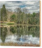 The Spring Pond Wood Print