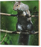 The Squirrel From Fairyland Wood Print