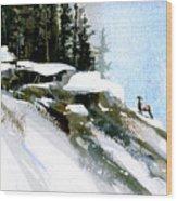 The Steep Climb Wood Print