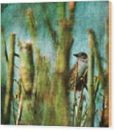 The Thrush Wood Print