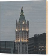 The Woolworth Building Wood Print