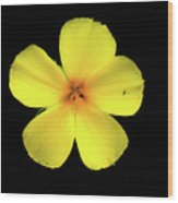 The Yellow Flower Wood Print