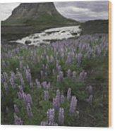 Thofafoss Waterfall Iceland 1571 Wood Print