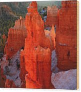 Thor's Hammer In Bryce Canyon Wood Print by Pierre Leclerc Photography