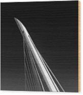 The Needle Wood Print