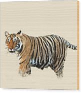 Tiger In The Long Grass Wood Print