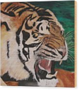 Tiger Paw Wood Print by Shahid Muqaddim