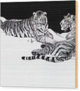 Tigers In The Snow Wood Print