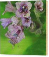 Tiny Purple Flower Wood Print