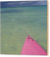 Tip Of Pink Kayak Wood Print