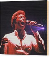 Tom Jones In Concert Wood Print