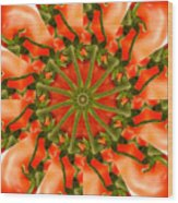 Tomato Kaleidoscope Wood Print