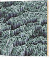 Tooth Enamel, Sem Wood Print by Steve Gschmeissner