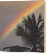 Top Of A Palm Tree Wood Print
