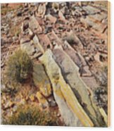Tracks Of Color In Valley Of Fire Wood Print