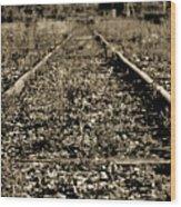 Tracks  To Where Wood Print