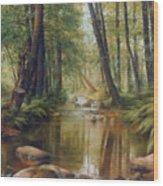 Transcarpatien Landscape Wood Print