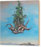 Traveller Wood Print