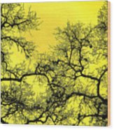 Tree Fantasy 18 Wood Print