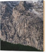 Teton Tree Line  Wood Print