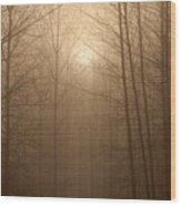 Trees Silhouetted In Fog Wood Print