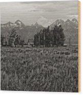 Tres Tetons Wood Print