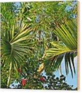 Tropical Plants Wood Print