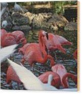 Tropical Sanctuary Wood Print