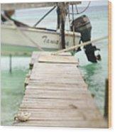 Tuamotu Isles Wood Print