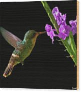 Tufted Coquette Wood Print