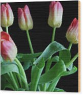 Tulip Bouquet Wood Print by Tracy Hall