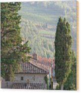 Tuscan Farmhouse At Villa Vignamaggio Wood Print