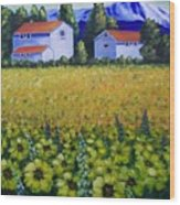 Tuscan Sunflowers Wood Print