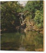 Twin Falls Pool Wood Print