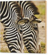 Twins In Stripes Wood Print