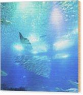 Undersea Deep Background Wood Print