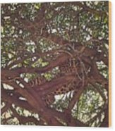 Up High Wood Print