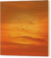 Upon A Sunset Flight Wood Print