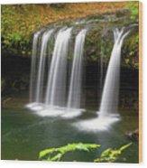 Upper Butte Creek Falls In Autumn Wood Print