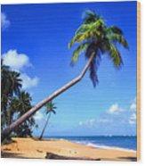 Vacia Talega Beach Wood Print