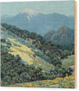 Valley Splendor Wood Print