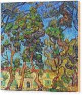 Van Gogh: Hospital, 1889 Wood Print by Granger