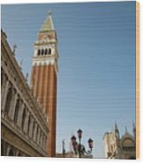 Venice Wood Print by Louise Fahy