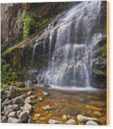 Veu Da Noiva Waterfall Wood Print