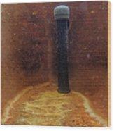 Vichy Springs Carbonated Hot Springs Wood Print