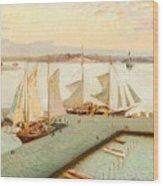 View From Pohjoisranta Wood Print