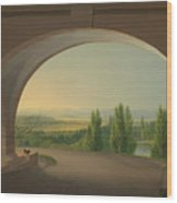 View From Wilhelmshohe Towards Kassel Wood Print