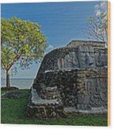 View Of Cerros Maya Ruins At Cerros Wood Print