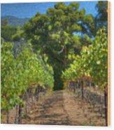 Vineyard Sauvignon Blanc Grapes Wood Print