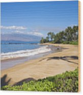 Wailea Ulua Beach Wood Print